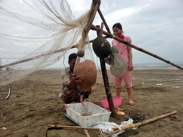 Được biết hiện nay 1 kg ruốc tươi có giá từ 50 - 70 ngàn đồng/kg, ruốc khô có giá 100 ngàn đồng/kg.