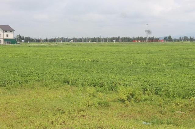 Vùng quy hoạch cấp đất cho cán bộ, công chức, viên chức nhưng hiện tại người dân vẫn canh tác