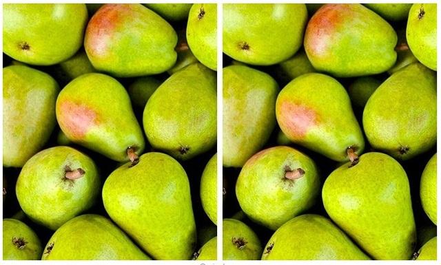 Thử tài tinh mắt: Đố bạn phát hiện điểm khác nhau giữa hai bức tranh - 3