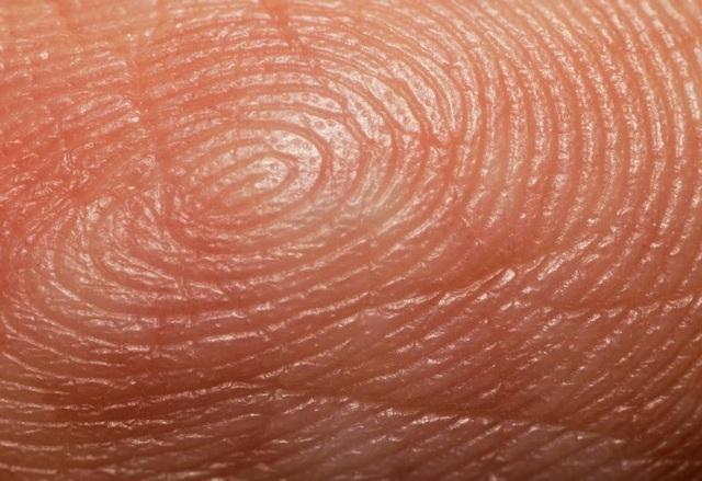 Công nghệ kiểm tra vân tay có thể biết được lịch sử sinh hoạt trong một tháng - 1