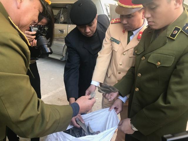 215 kg nghi là vẩy tê tê bị các lực lượng chức năng tỉnh Bắc Giang bắt giữ