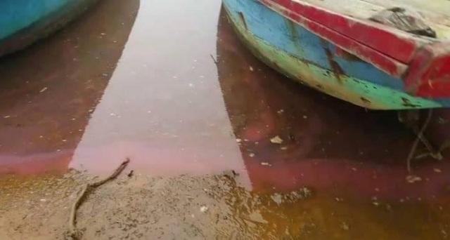 Lại xuất hiện dải nước đỏ dài 30m, kéo loang trên biển - 1