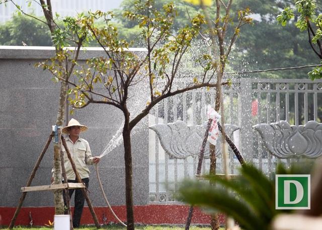 Những cây xanh mới trồng được công nhân chăm sóc.