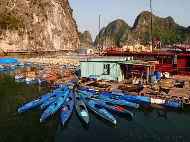 Chèo kayak trên vịnh Hạ Long là hoạt động được du khách ưa thích (ảnh Internet)