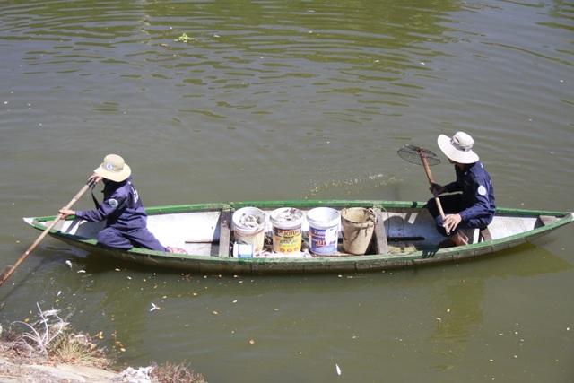 Công nhân vớt cá chết trên sông Phú Lộc