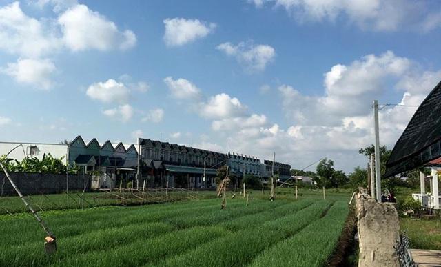 Hàng loạt căn nhà liền kề giống nhau mọc lên sau khi thực hiện tách thửa thành công tại xã Long Thượng, huyện Cần Giuộc.