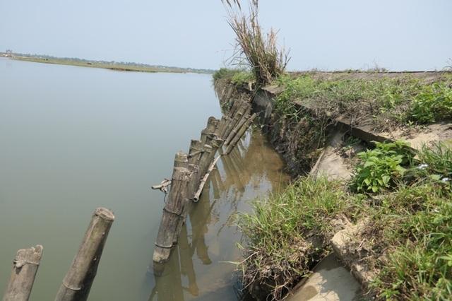 Đoạn đê bị xói lở nặng, có nguy cơ ảnh hưởng đến việc sản xuất lúa khi lũ về nếu xảy ra vỡ đê.