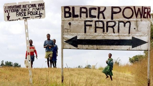 Năm 1997, khi chính phủ của Thủ tướng Anh Tony Blair rút khỏi các cuộc đàm phán tài trợ cho chương trình cải cách đất đai gây tranh cãi ở Zimbabwe và sau khi ông Mugabe thất bại trong cuộc trưng cầu dân ý về hiến pháp mới 3 năm sau đó, các lực lượng vũ trang thân chính quyền Mugabe bắt đầu chiếm các điền trang của người da trắng. (Ảnh: AFP)