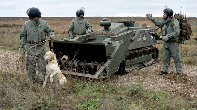 Lực lượng công binh Nga và robot Uran-6 cùng chó nghiệp vụ cùng triển khai nhiệm vụ rà phá bom mìn. (Ảnh: Sputnik)