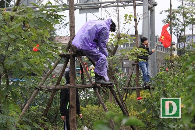 Thậm chí cả một người đang mặc áo mưa cũng trèo lên cây bất chấp nguy hiểm.