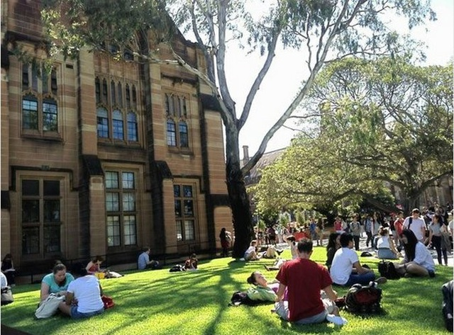 Ngày hội thông tin Đại học Sydney - Cơ hội cho học sinh Việt Nam - 1