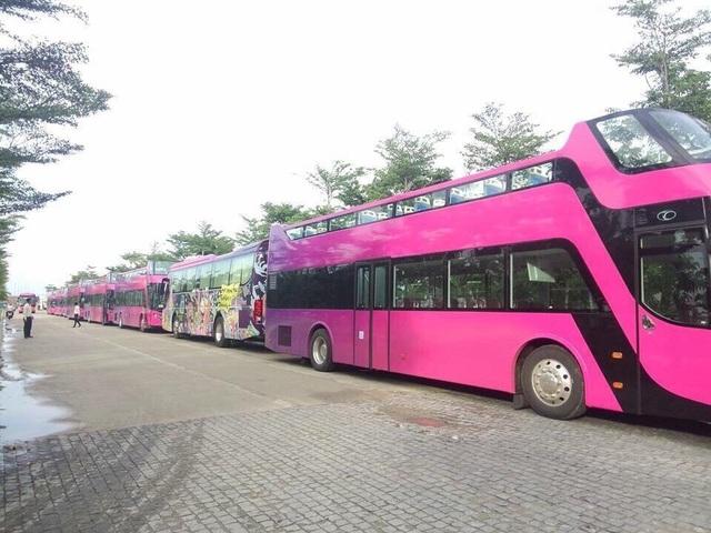 Đây là những chiếc xe bus 2 tầng, mui trần đầu tiên tại Việt Nam, được Empire Group (chủ đầu tư tổ hợp Cocobay) mua về để phục vụ những chuyến tham quan City Tour quanh Đà Nẵng. Khi nhận được nhiệm vụ đón đoàn U23 Việt Nam trở về, chiếc áo sặc sỡ của những chiếc Coco Bus ngay lập tức được thay bằng một lớp áo mới.