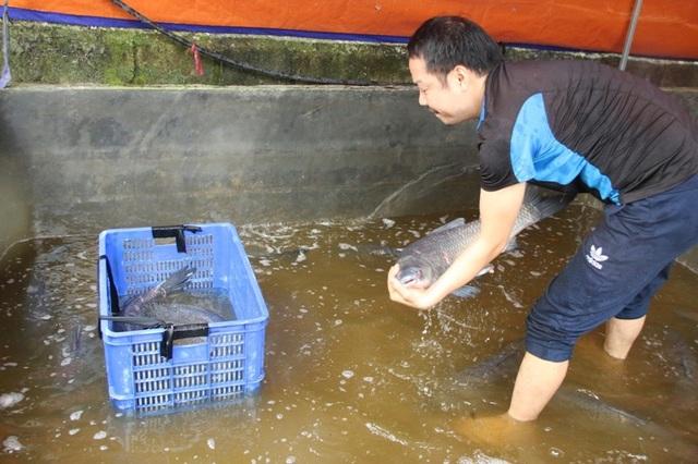 Nồi cá kho đặc biệt của làng Vũ Đại - 2