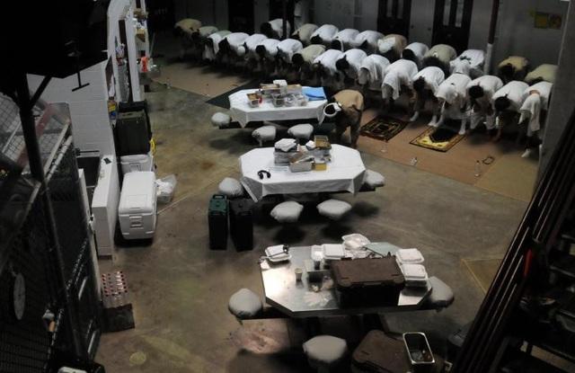 Nhiều phần tử khủng bố khét tiếng thế giới đã bị đưa tới nhà tù Guantanamo, bao gồm Khalid Sheik Mohammed - thủ lĩnh số 3 của Al-Qaeda và không tặc vụ 11/9 Ramzi Bin Al-Shibh. Nhiều phạm nhân tại Guantanamo là người Hồi giáo. Trong ảnh: Các phạm nhân cầu nguyện ở khu vực hoạt động chung ở Trại 6.