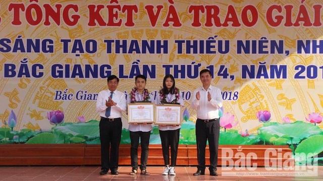 Cháu bé 6 tuổi đạt giải cuộc thi Sáng tạo thanh thiếu niên, nhi đồng tỉnh Bắc Giang - Ảnh 1.