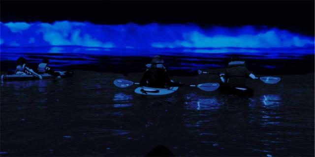 Đến Mỹ trải nghiệm chèo thuyền trong suốt giữa biển nước phát sáng! - 4