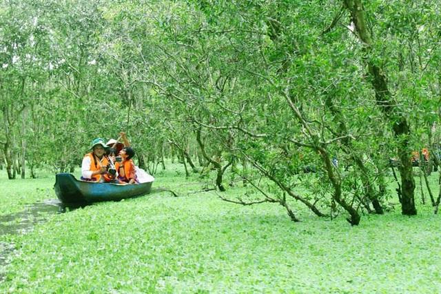 An Giang: Rừng tràm Trà Sư đẹp nhất mùa nước nổi - 6