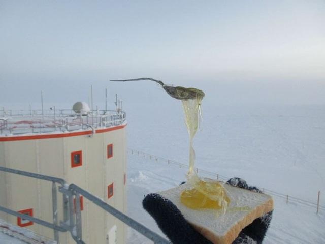"""""""Ăn trưa trên mái nhà"""", nhà khoa học chia sẻ."""