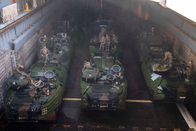 Tướng Chris McPhillips, Chỉ huy Lữ đoàn Viễn chinh Lính thủy đánh bộ số 3 đồng thời là chỉ huy lực lượng Mỹ tham gia tập trận, cho biết Mỹ muốn giúp Nhật Bản phát triển đơn vị lính thủy đánh bộ và cuộc tập trận sẽ giúp cải thiện khả năng phối hợp tác chiến của lực lượng quân sự hai nước trong trường hợp khẩn cấp.
