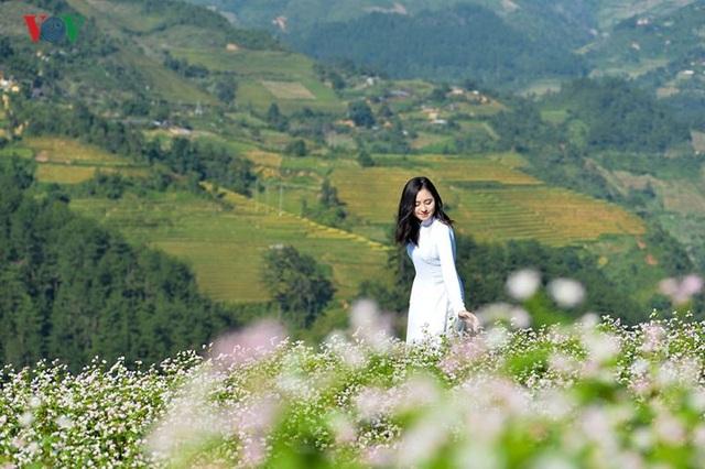 Ngắm đồi mâm xôi đẹp nổi tiếng trong mùa vàng Mù Cang Chải - 9