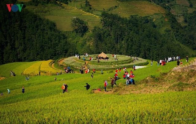 Ngắm đồi mâm xôi đẹp nổi tiếng trong mùa vàng Mù Cang Chải - 10