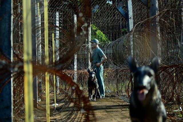 Mỗi lớp hàng rào kẽm gai đều có lính canh và chó nghiệp vụ.
