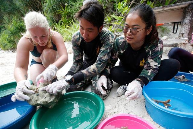 Khách du lịch đã phá hủy bãi biển du lịch nổi tiếng của Thái lan như thế nào? - 8