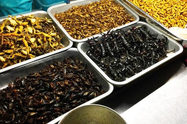 Thậm chí côn trùng còn được chế biến sẵn thành món ăn. Ảnh: Gody.