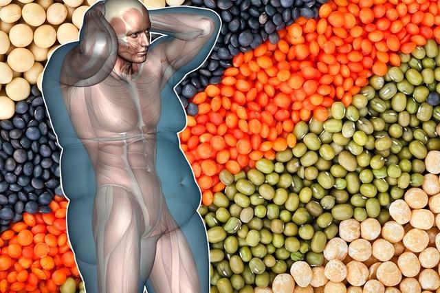 Những loại hạt nên bổ sung trong thực đơn giảm cân - 1
