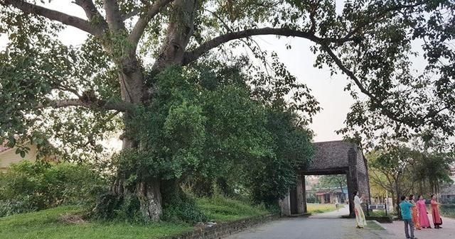 Cổng làng xây bằng đá ong, hai cánh làm từ gỗ lim theo hình cánh dế. Bên trái là cây đa cổ thụ tỏa bóng mát, bên phải là một hồ nước trong xanh. Trước kia, đây là nơi nghỉ chân của những người nông dân sau giờ làm đồng.
