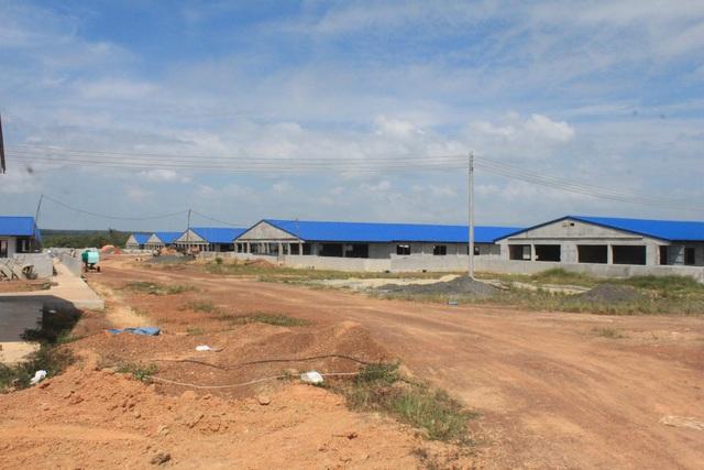 Trại heo khủng dù đã bị xử phạt nhưng vẫn được chủ đầu tư xây dựng gần hoàn thiện