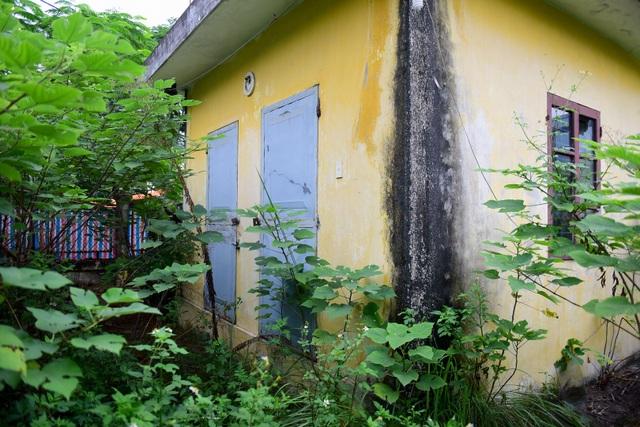 Dự án được kì vọng sẽ là khu xử lý nước thải phục vụ cho các hộ sản xuất của làng nghề nhưng lại bị bỏ hoang.