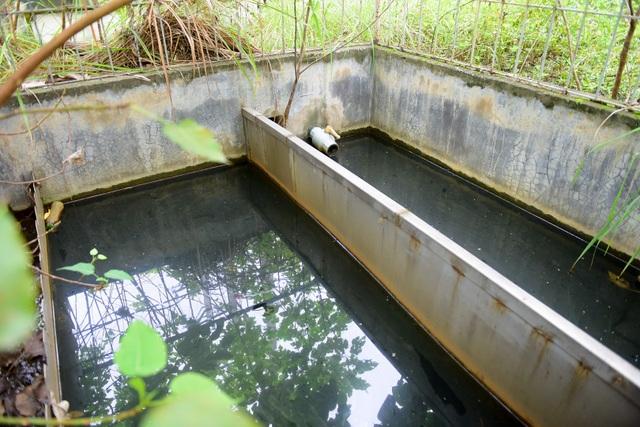 Bể chứa nước lâu ngày đen ngòm, bốc mùi hôi thối.