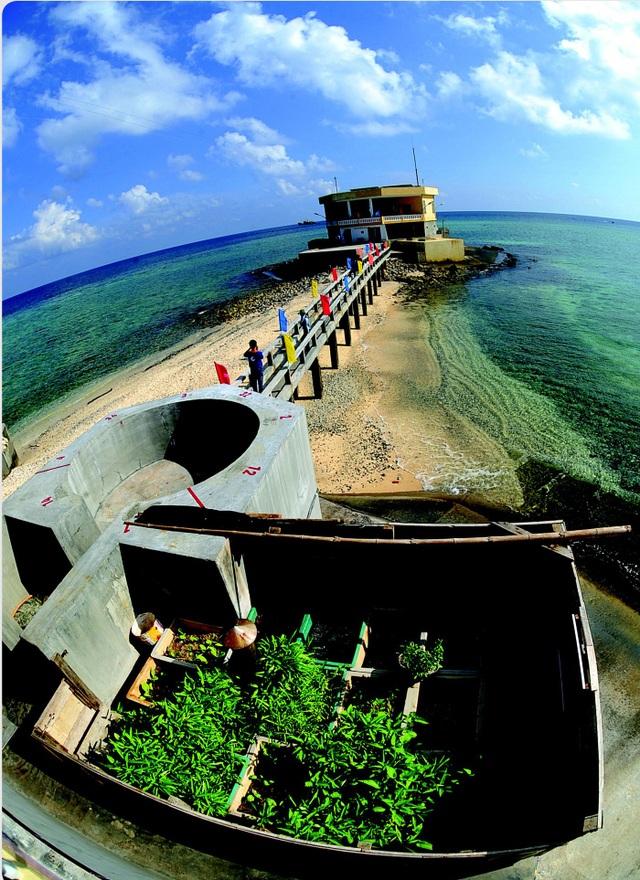 Đảo Đá Tây