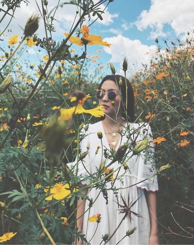 Đà Lạt đẹp cả 4 mùa Xuân, Hạ, Thu, Đông nhưng thơ mộng nhất bao giờ cũng là khoảng thời gian tháng 10, khi những thảm hoa dã quỳ vàng rực. Tháng 10, những cung đường, đồi hoa vàng trải rộng khắp các con đường tạo vẻ đẹp lôi cuốn cho thành phố.