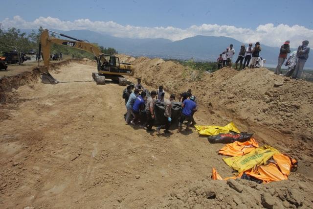 Do số nạn nhân thiệt mạng quá lớn nên chính quyền Palu buộc phải dùng máy xúc đào hố chôn cất tập thể.