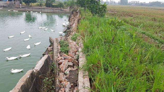 Các kênh nổi dẫn nước chỗ thì hư hỏng, chỗ thì sụt lún xuống cấp trầm trọng