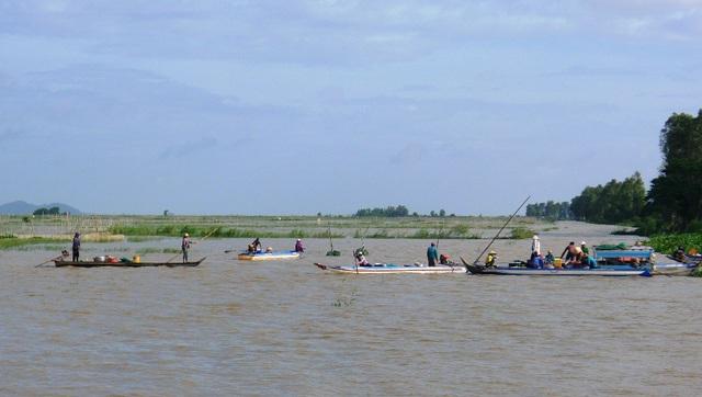Ở những cánh đồng nước nổi của huyện An Phú, không khó bắt gặp cảnh bà con tất bật mưu sinh mùa lũ