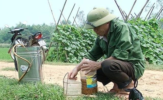 Phương pháp sử dụng thảo dược để làm thuốc trừ sâu đang được nhiều nông dân ở Nghệ An áp dụng.