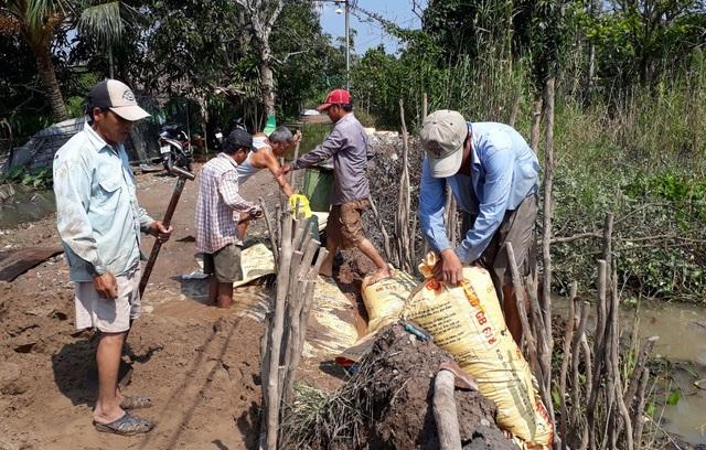 Những ngày qua, người dân Cồn Khương căng mình gia cố đê bao để bảo vệ vườn cây ăn trái thoát qua hai đợt triều cường sắp tới là vào 15/9 và 30/9 âm lịch