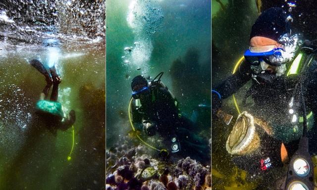 Các thợ lặn săn bào ngư ở châu Phi (Ảnh: Shaun Swingler/Guardian)