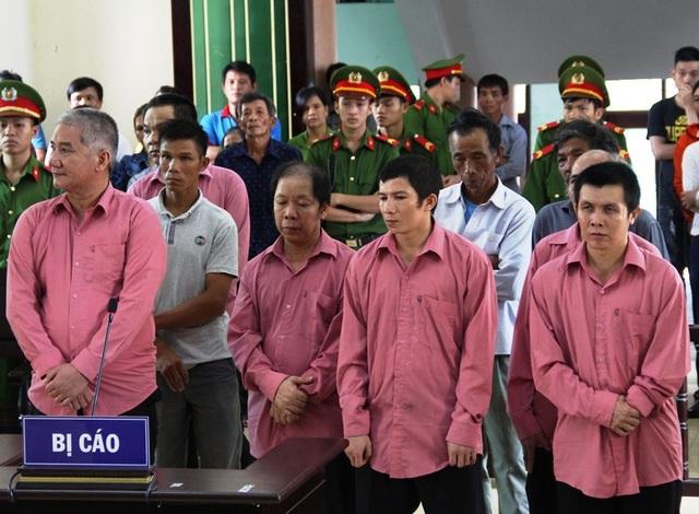 Tổng cộng 9 bị cáo bị tuyên phạt 81 năm tù vì tội hủy hoại rừng.