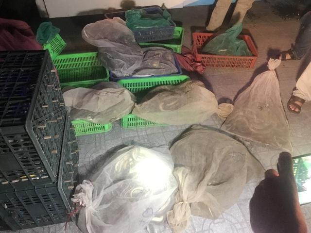 Có đến 200kg rắn đủ loại được vận chuyển