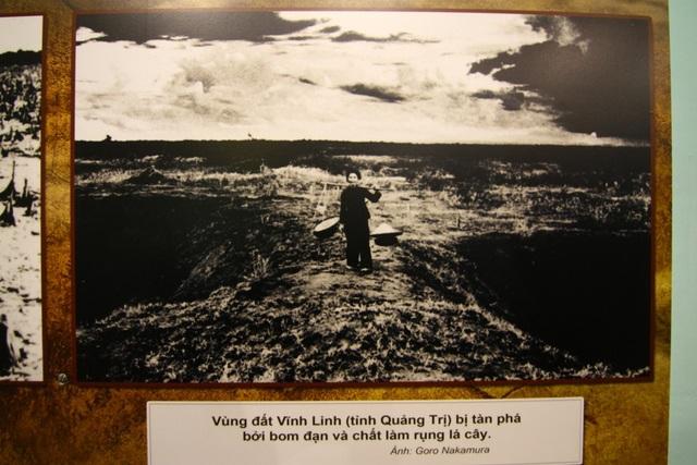 Vùng đất Vĩnh Linh tại tỉnh Quảng Trị bị tàn phá bởi bom đạn và chất làm rụng lá cây