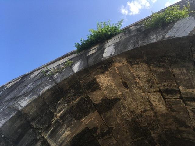 Sự xâm hại, tác động của các loài thực vật, rêu mốc, địa y, muối lên tường cổng thành phía Nam.