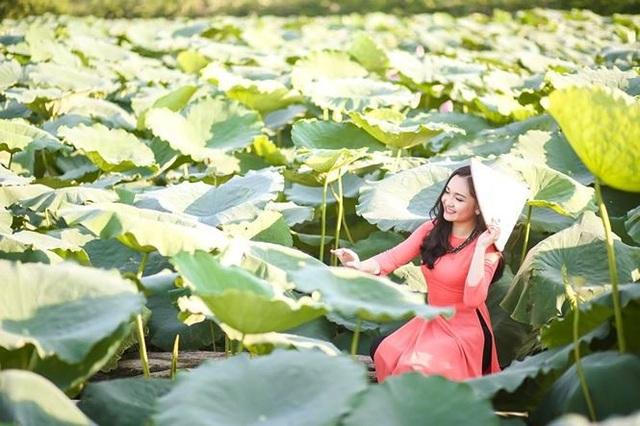 Nhật Linh là một cô gái xinh đẹp có đam mê ca hát từ nhỏ. Ngoài những thành tích tốt trong học tập, Nhật Linh còn có vô vàn những năng khiếu tài lẻ khác.