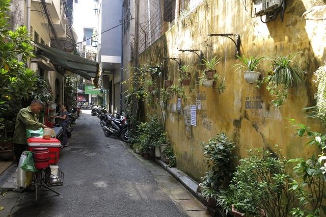 Tại phố Cổng Đục (quận Hoàn Kiếm), khu vực được coi là khu trung tâm của Hà Nội, một mảng tường lớn kéo dài hàng chục mét hình thành một vườn treo với rất nhiều chậu hoa, cây cảnh đủ loại.