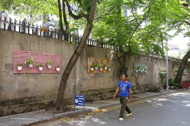 Phố Ấu Triệu (quận Hoàn Kiếm) với bức tường được trang trí bằng nhiều chậu cây treo trên những tấm giát giường sơn nhiều màu.