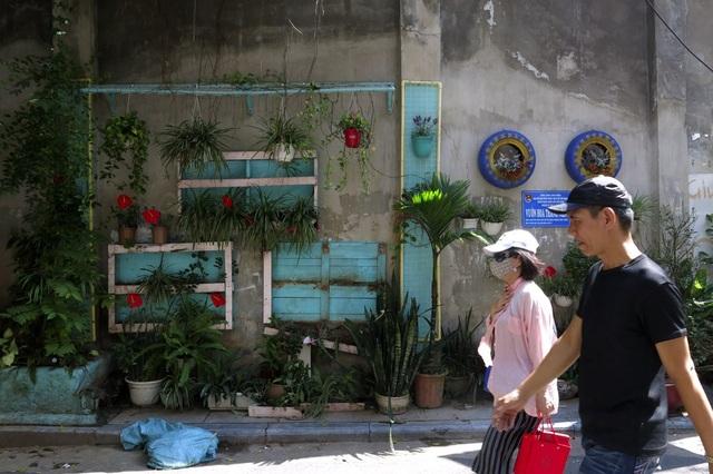 Những vườn treo nhỏ xinh, mát mắt dọc ngõ phố Hà Nội - 16