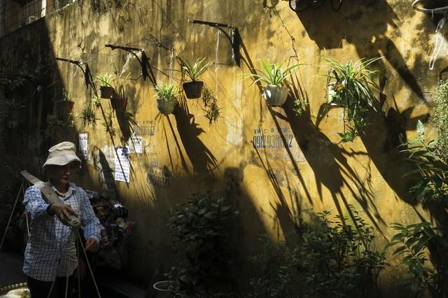 Bước vào con phố cổ, xen lẫn bức tường rêu phong là rất nhiều màu xanh của cây hoa tạo nên không gian như dịu lại, thư giãn, trong khi bên ngoài đầy khói bụi.